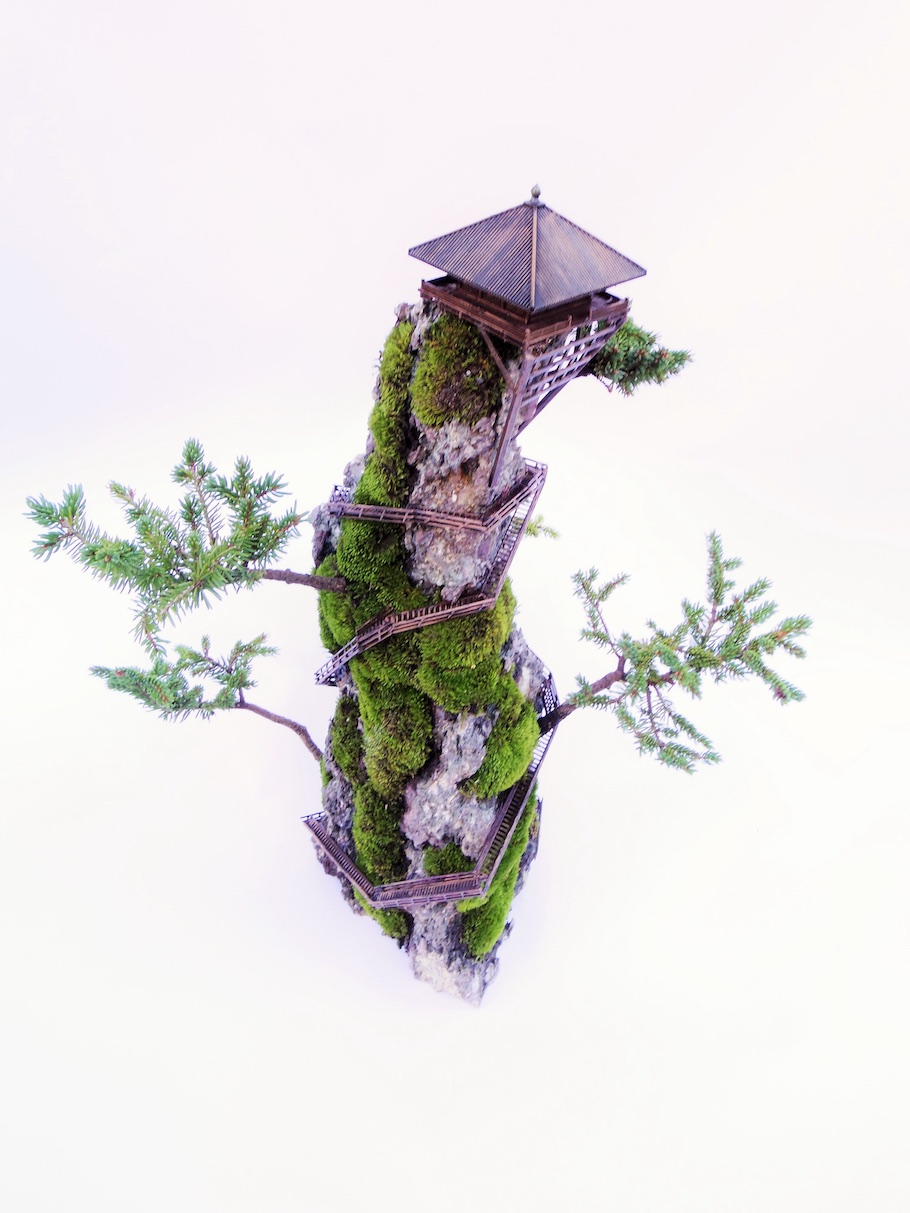 Cliff Bonsai tree, miniature landscape